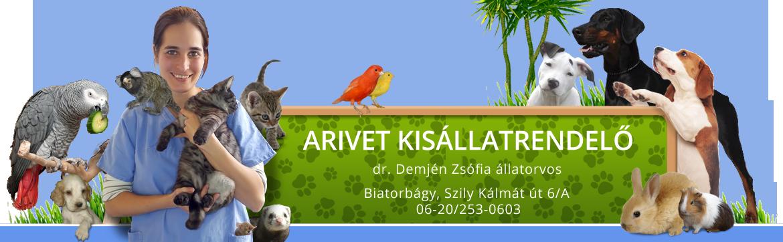 Állatorvos Biatorbágy